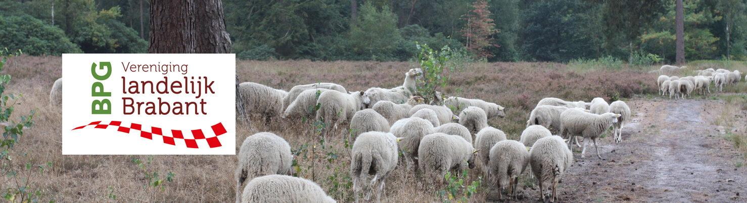 BPG Vereniging landelijk Brabant